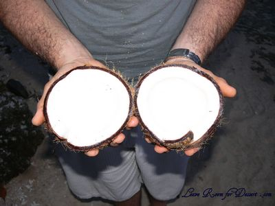 A coconut we found on the beach - Nick cracked it opened, over 10 minutes, then we ate it for dinner